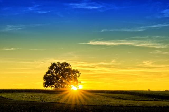 Thanks to http://lusays.files.wordpress.com/2012/12/sunset.jpg
